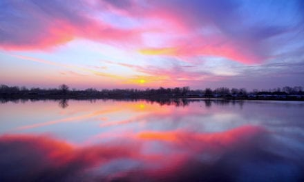 I'm Not Sure Why the Sky Turns Pink by Safiyyah Motaib
