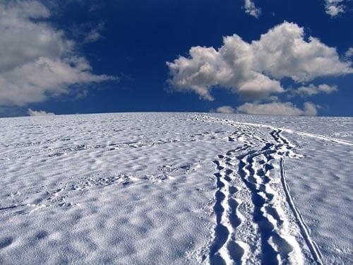 A Trampoline under Snow by Sandra Kolankiewicz